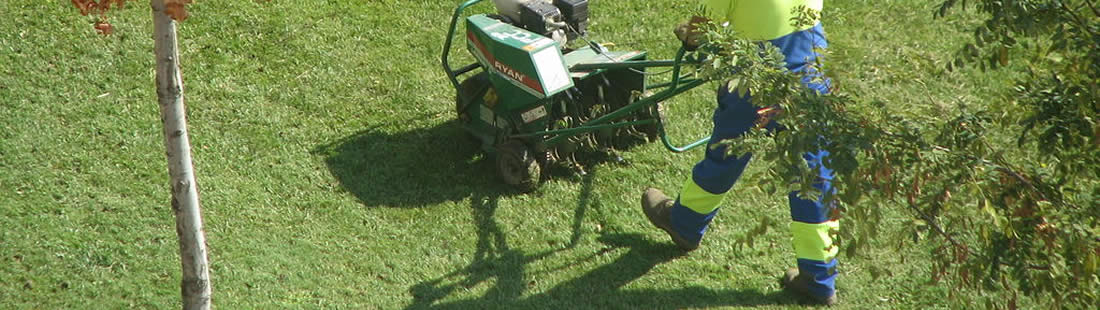 How to Prepare Your Lawn for the Upcoming Summer 1